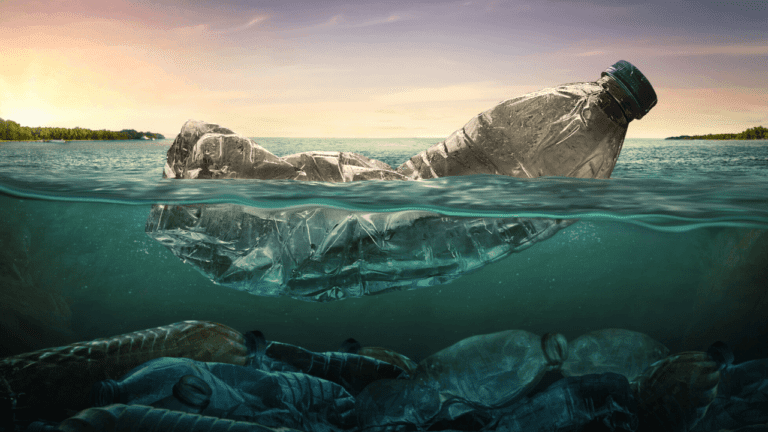 Plastic Cleanup Charge: A California Proposition